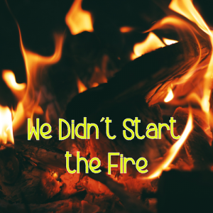 We Didn't Start The Fire - Marji McIlvaine - Master's Mark Academics